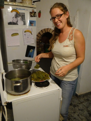 Learning how to make stuffed grape leaves in Greece